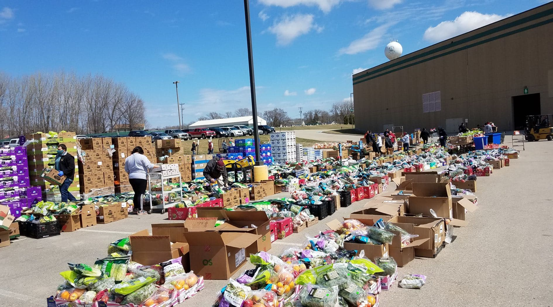 Hundreds of boxes full of food donations outside a warehouse, and volunteers using carts to transport boxes.